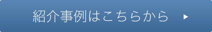 bot_jirei2