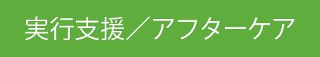 実行支援/アフターケア
